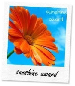 Sunshine Blogger Award 2013 – a welcome surprise!