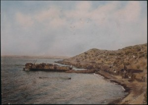 Gallipoli - `Anzac Cove and New Zealand Point, looking north, 1915-1918' by  Frank Hurley