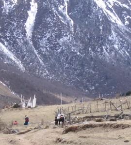 Funeral flags - Western Bhutan