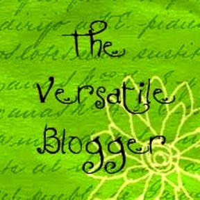 Versatile Blogger Award 2013 – crikey! a third blog award.