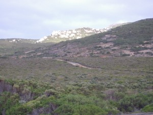 Mt Arid - Cape Arid, Western Australia