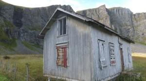 Birder's house - Mastad