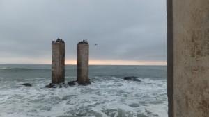 Cormorant columns