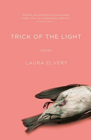 Seeing the Light – a book review